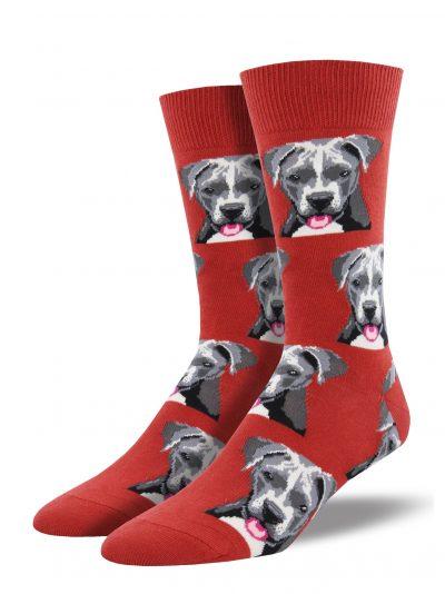 OK winkel.nl - Pitbull-honden-sokken