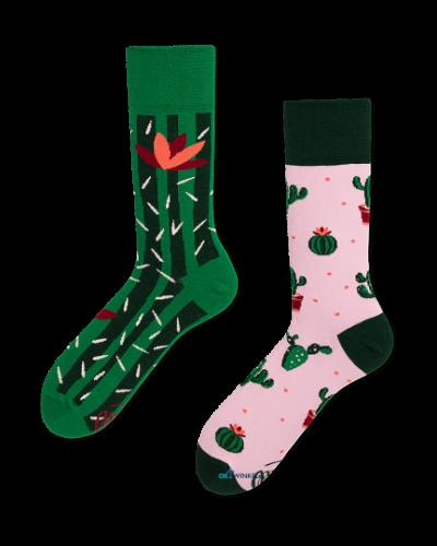 Cactus sokken MM