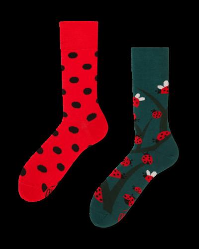 lieveheersbeestjes sokken MM
